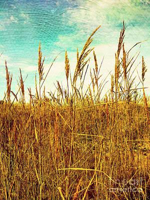 Cornfield Mixed Media - Golden Fields by Amelle Eley