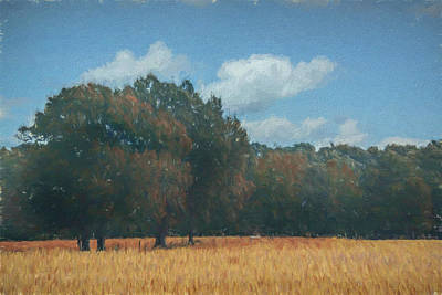 Painting - Golden Fields by Jai Johnson