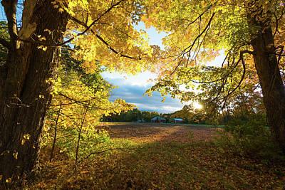 Photograph - Golden Fields by Robert McKay Jones