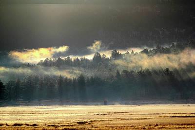 Photograph - Golden Fog by Shane Bechler