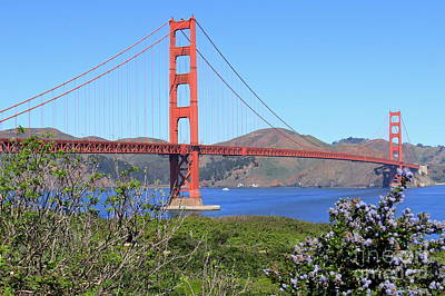 Photograph - Golden Gate Bridge by Suzanne Oesterling