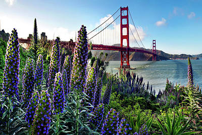 Golden Gate Flowers Art Print