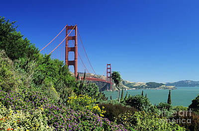 Photograph - Golden Gate Landscape by William Waterfall - Printscapes