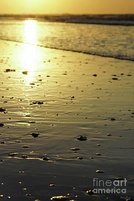Photograph - Golden Glassy Sand by Jennifer White