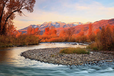 Photograph - Golden Glow At The Provo River. by Johnny Adolphson