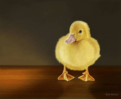 Mallard Duck Digital Art - Golden Glow by Bob Nolin