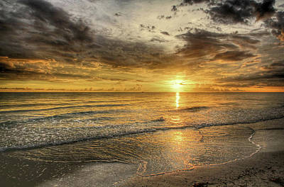 Photograph - Golden Glow by HH Photography of Florida