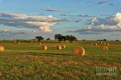 Haybales Photograph - Golden Glow Over Haybales by Tod and Cynthia Grubbs