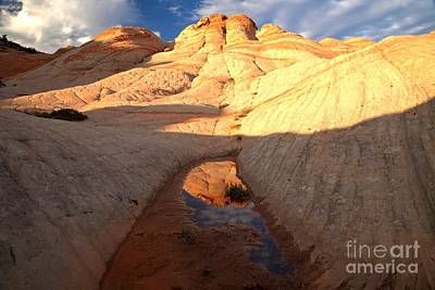 Photograph - Golden Glows And Reflections by Adam Jewell
