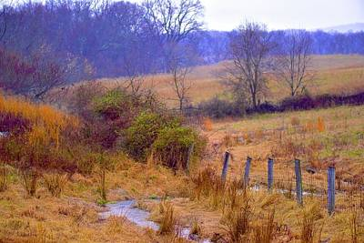 Photograph - Golden Grass Creek by Tracy Rice Frame Of Mind