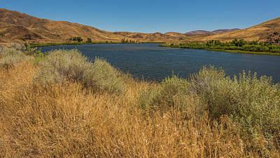 Photograph - Golden Grasses Along The Snake River by Brenda Jacobs