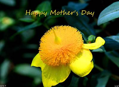 Photograph - Golden Guinea Happy Mothers Day by Lisa Wooten