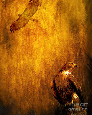 Bif Digital Art - Golden Hawk 4 by Wingsdomain Art and Photography