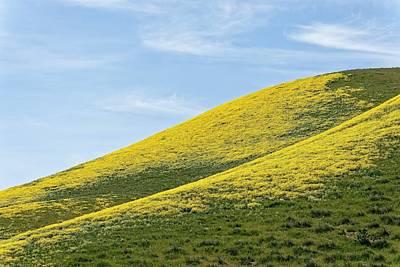 Photograph - Golden Hills Of California by KJ Swan