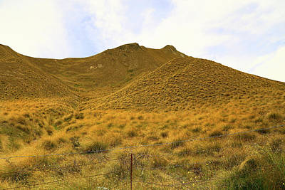 Photograph - Golden Hillside by Nareeta Martin