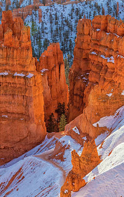 Photograph - Golden Hoodoos by Jonathan Nguyen