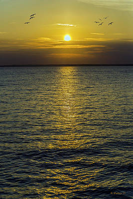 Luminous Globe Photograph - Golden Horizon by Brian Wallace