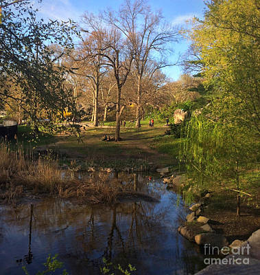 Photograph - Golden Hour By The Lake - Central Park In Spring by Miriam Danar