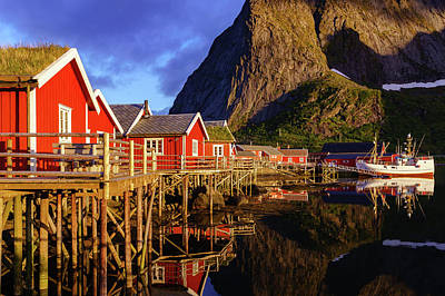 Photograph - Golden Hour In Reine by Dmytro Korol