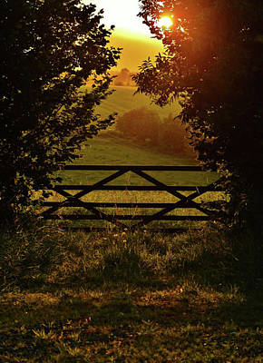 A Summer Evening Photograph - Golden Hour by Mike Gibbons