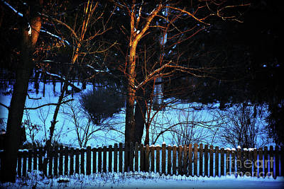 Frank J Casella Royalty-Free and Rights-Managed Images - Golden Hour on the Fence by Frank J Casella