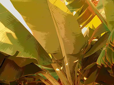 Photograph - Golden Hour Plant by Florene Welebny