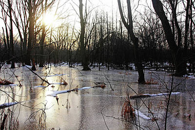 Photograph - Golden Ice Path II by Debbie Oppermann