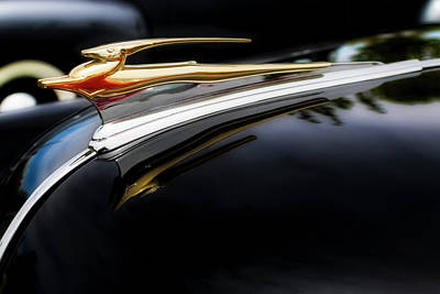 Photograph - Golden Impala by Mark David Gerson
