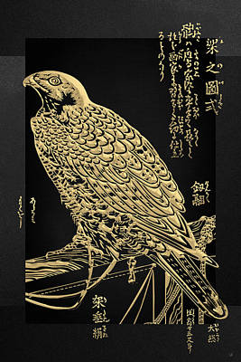 Digital Art - Golden Japanese Peregrine Falcon On Black Canvas  by Serge Averbukh