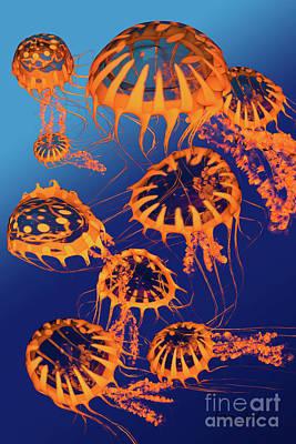 Golden Jellyfish Dance Art Print