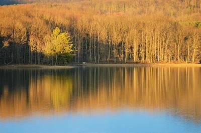 Photograph - Golden Lake by Jewels Blake Hamrick