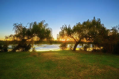Print featuring the photograph Golden Lake, Yanchep National Park by Dave Catley