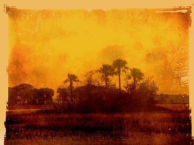 Golden Land Art Print