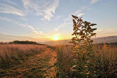 Photograph - Golden Landscape At Max Patch Nc by Doug Ash