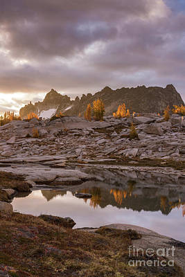 Photograph - Golden Larches In The Distance by Mike Reid