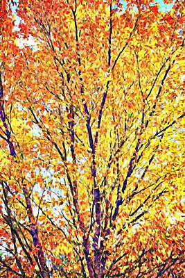 Photograph - Golden Leaves - Impressionist by Tatiana Travelways