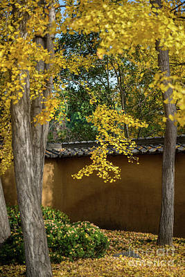 Golden Leaves Print by Jamie Pham