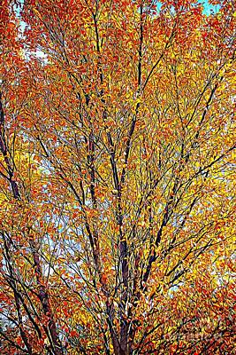 Photograph - Golden Leaves - Oil Paint by Tatiana Travelways
