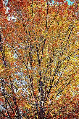 Golden Leaves - Oil Paint Art Print