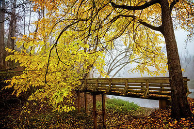 Photograph - Golden Leaves Over The Bridge by Debra and Dave Vanderlaan