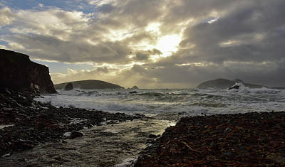 Photograph - Golden Light Blasket Islands by Barbara Walsh