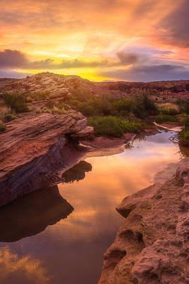 Golden Light In Moab Art Print by Darren  White