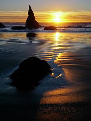 Photograph - Golden Light by Inge Riis McDonald