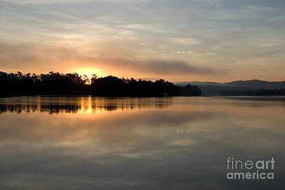 Photograph - Golden Liquid Dawn by Kerryn Madsen-Pietsch