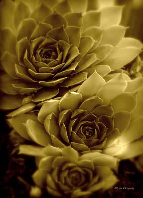 Photograph - Golden Luminous Menagerie by Jeanette C Landstrom
