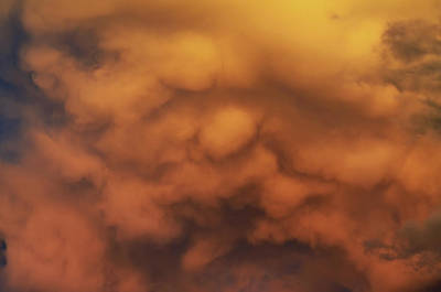 Photograph - Golden Mammatus by Ally White
