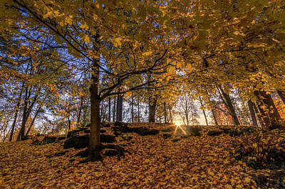 Landscape Photograph - Golden Manito by Mark Kiver