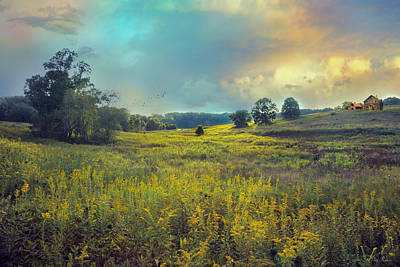 Photograph - Golden Meadows by John Rivera