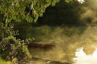Photograph - Golden Mist At Knife Lake by Larry Ricker