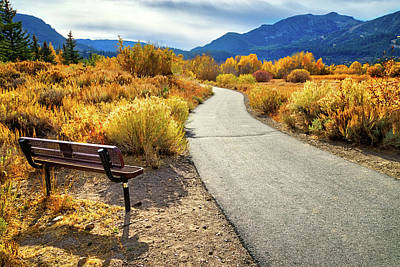 Photograph - Golden Moments In Mammoth by Lynn Bauer